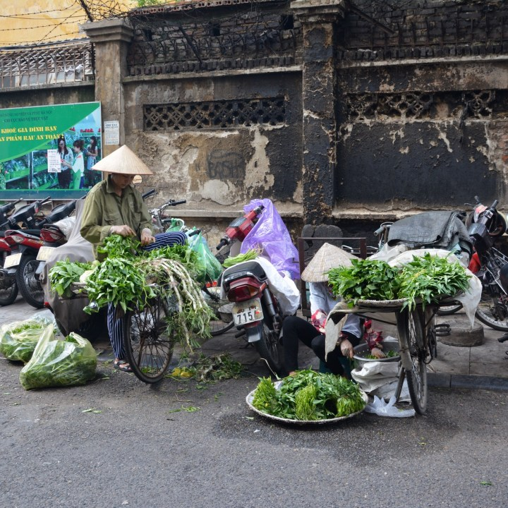 travel with kids vietnam hanoi vegetables