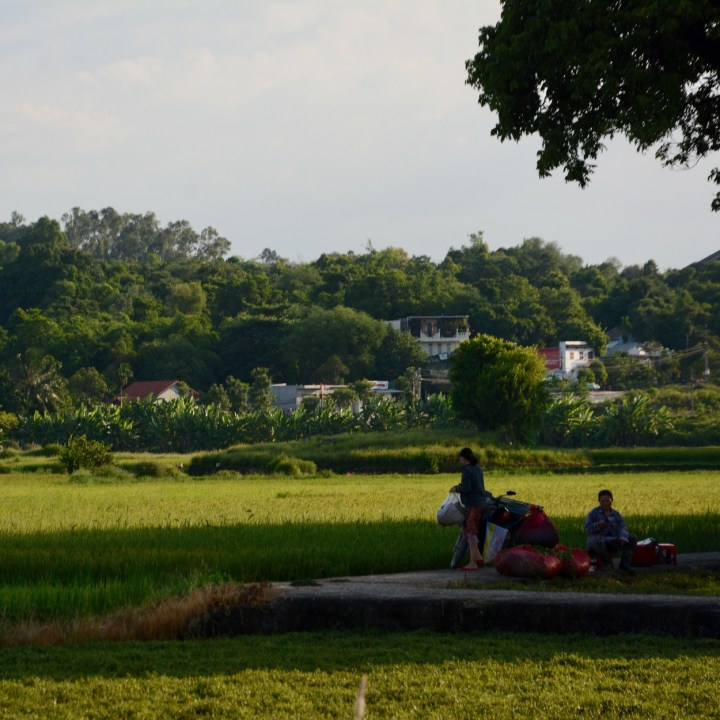 vietnam travel with kids hue ladies cutting grass