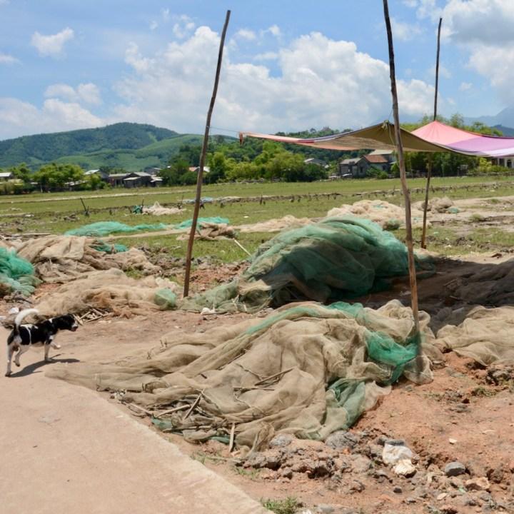 vietnam with kids cai lau lagoon fishing nets