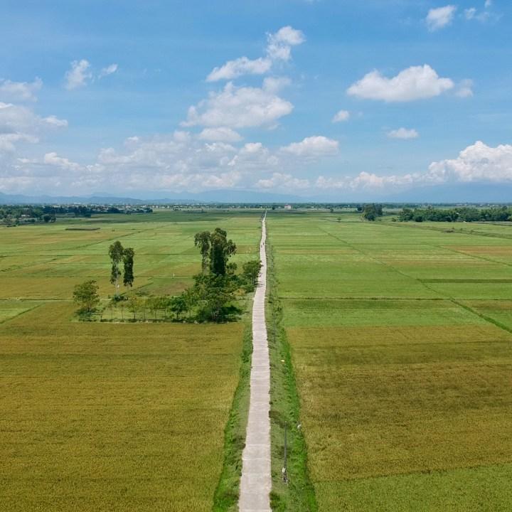vietnam travel with kids hoi an rural bike ride rice fields