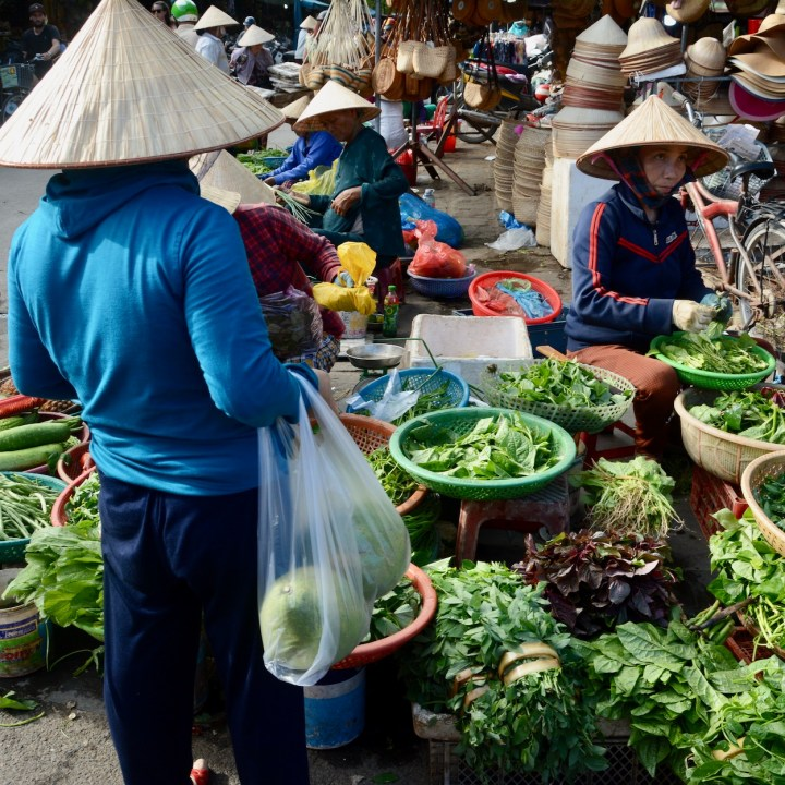 hoi an with kids local market leaves