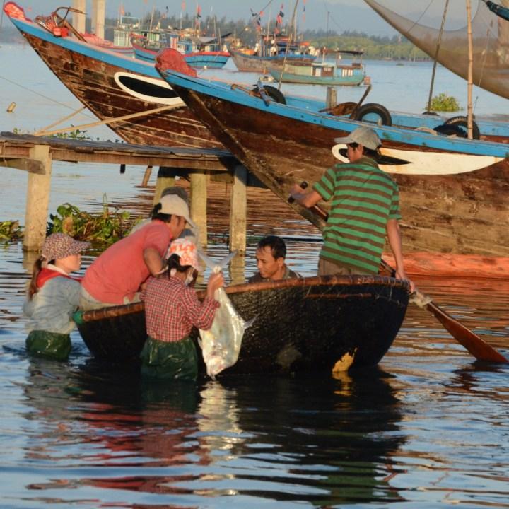 photo tour vietnam hoi an silver fish