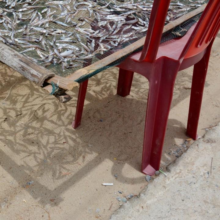 travel with kids vietnam tam than art village fish