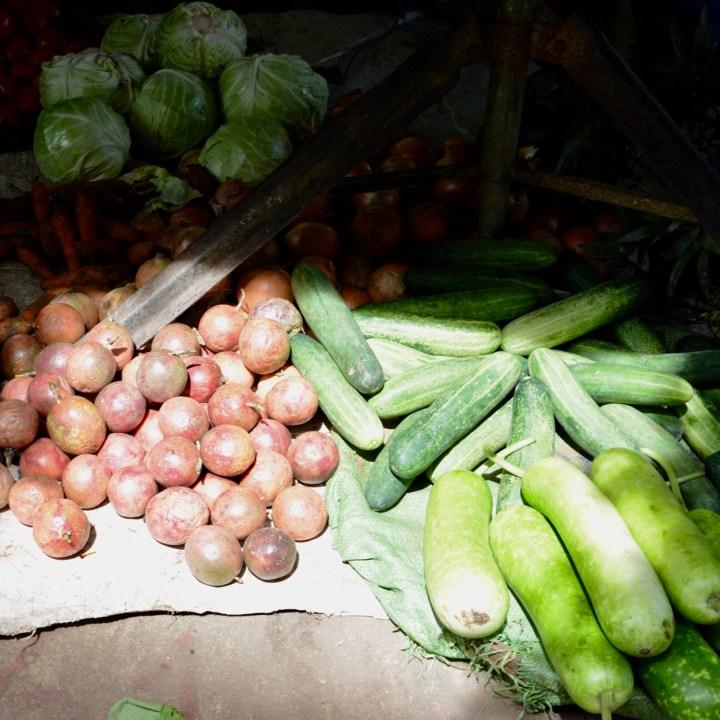 vietnam with kids hoi an cooking class cucumber
