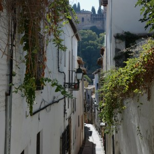granada with kids albaicin alhambra view