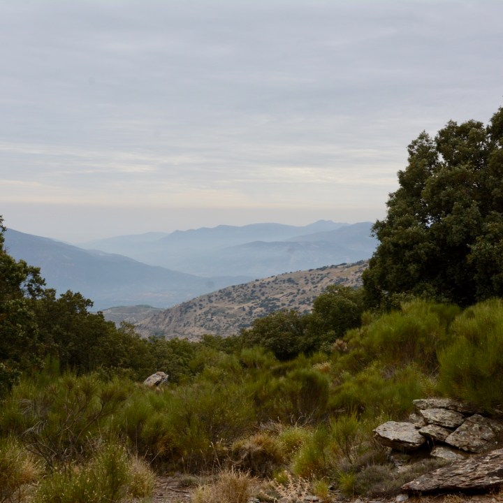 hiking with kids las aplujarras mountain views