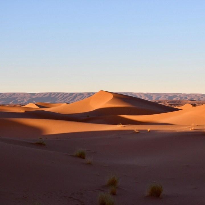 Morocco with kids sahara dunes
