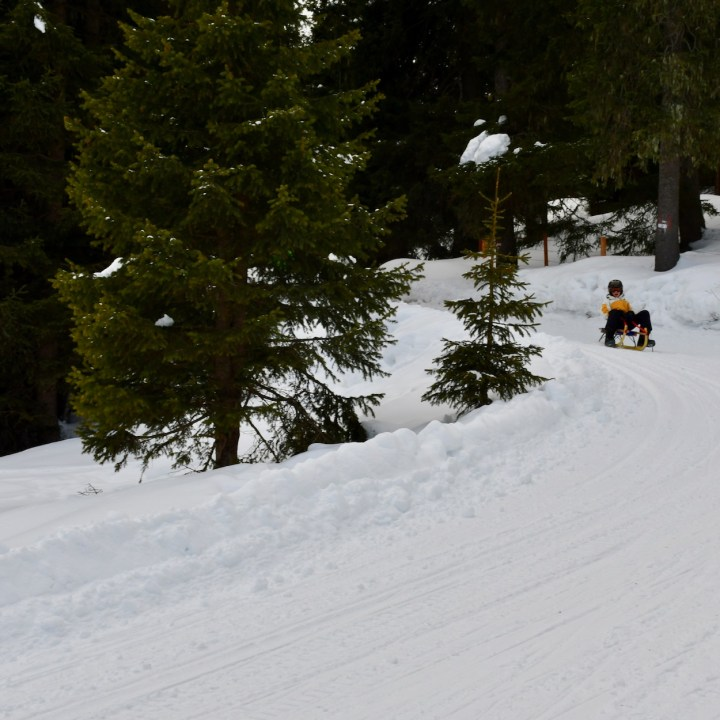 seiser alm skiing with kids zallinger sledging