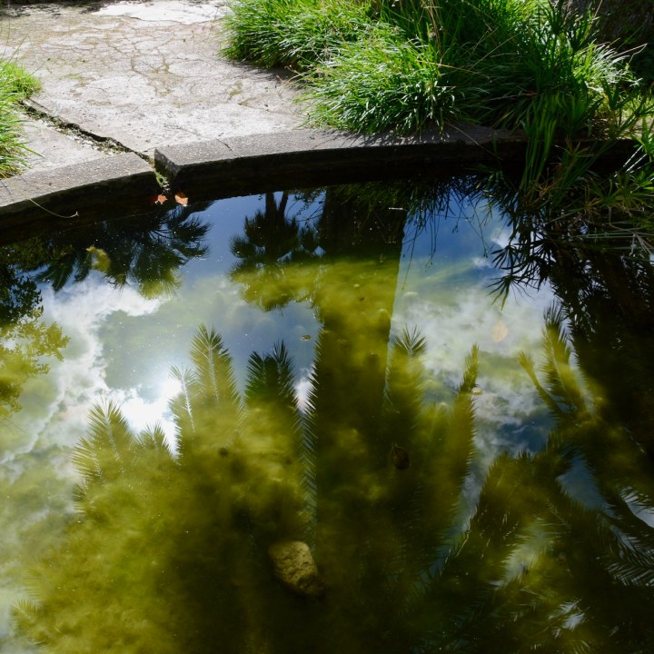Mallorca with kids gardens alfabia refelections