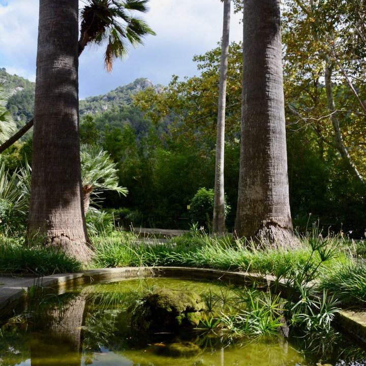 Mallorca with kids gardens alfabia pond