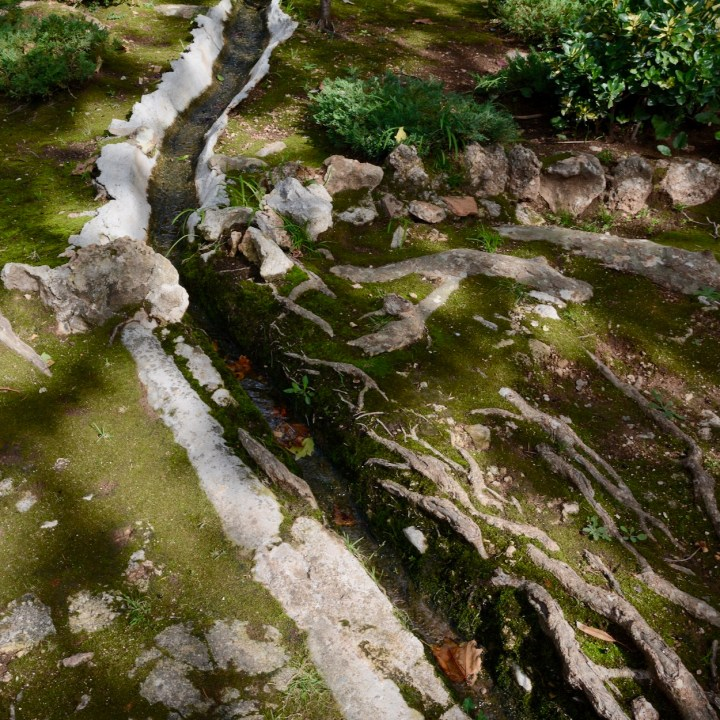 Mallorca with kids gardens alfabia moss