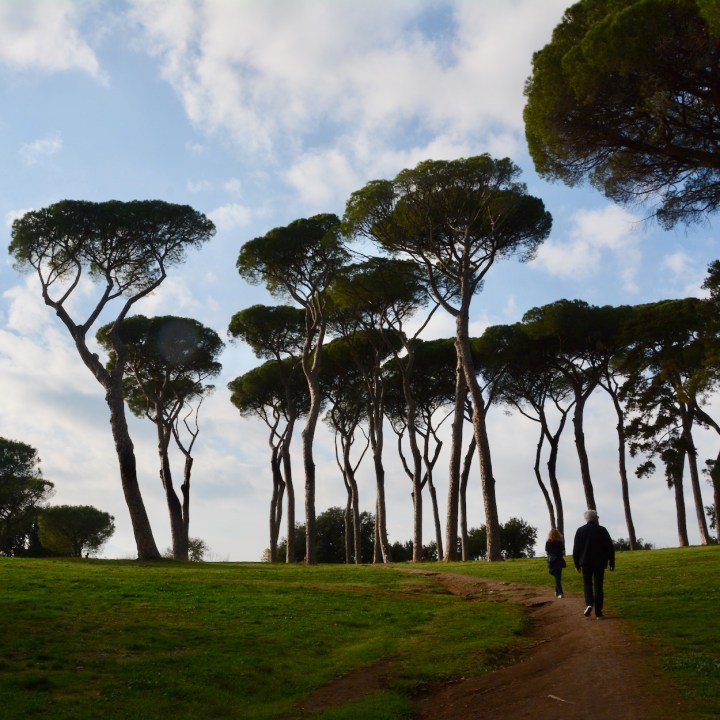 Rome with kids park villa doria pamphili pine trees