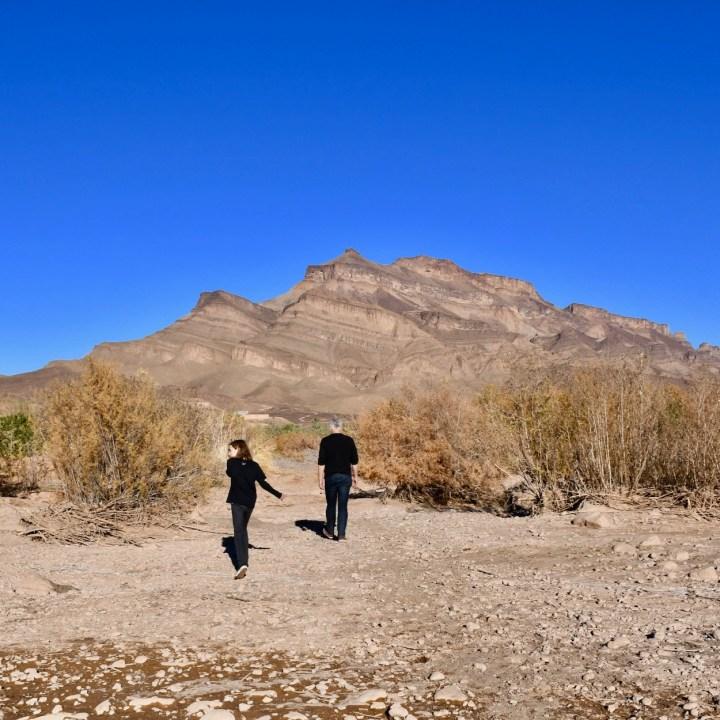Agdz Morocco with kids Lodge Hara Oasis wild