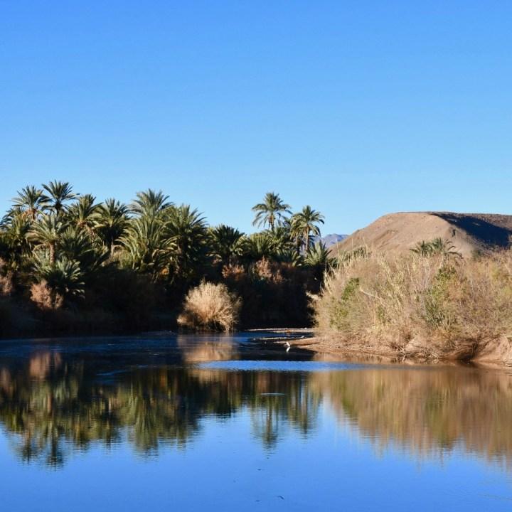 Agdz Morocco with kids Lodge Hara Oasis draa valley