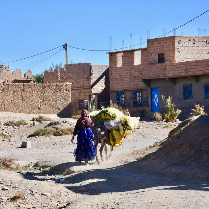 Agdz Morocco with kids draa valley hike packed donkey