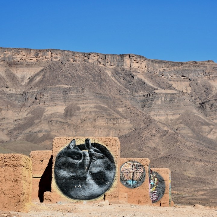 Agdz, Morocco | Wanders Through the Draa Valley and Our Discovery of Street Art at the Tamnougalt Kasbah