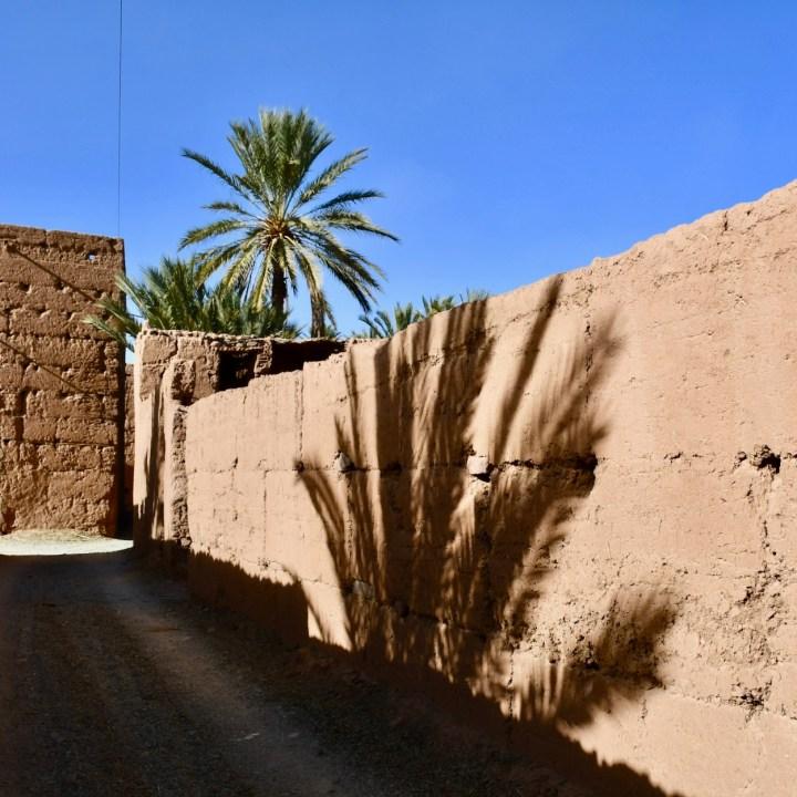 Agdz Morocco with kids Lodge Hara Oasis shadow
