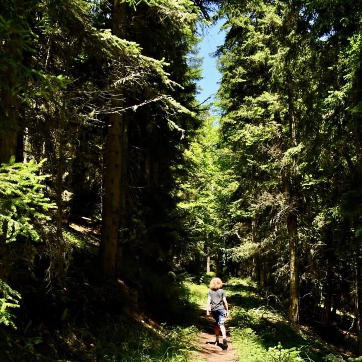 Exploring Georgia with kids Borjomi hiking