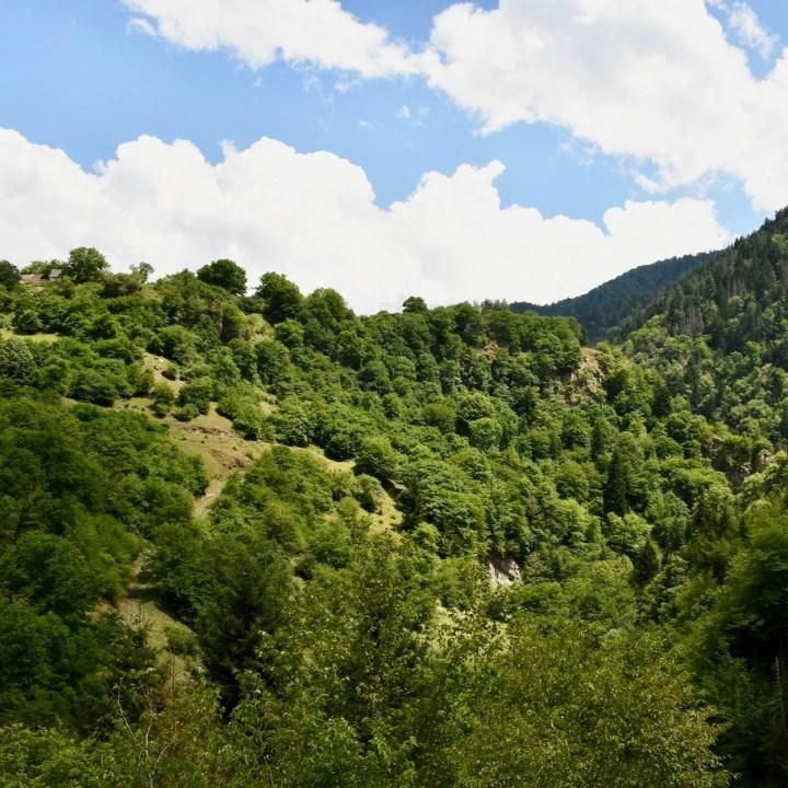 Borjomi with kids adventure trail mountain views