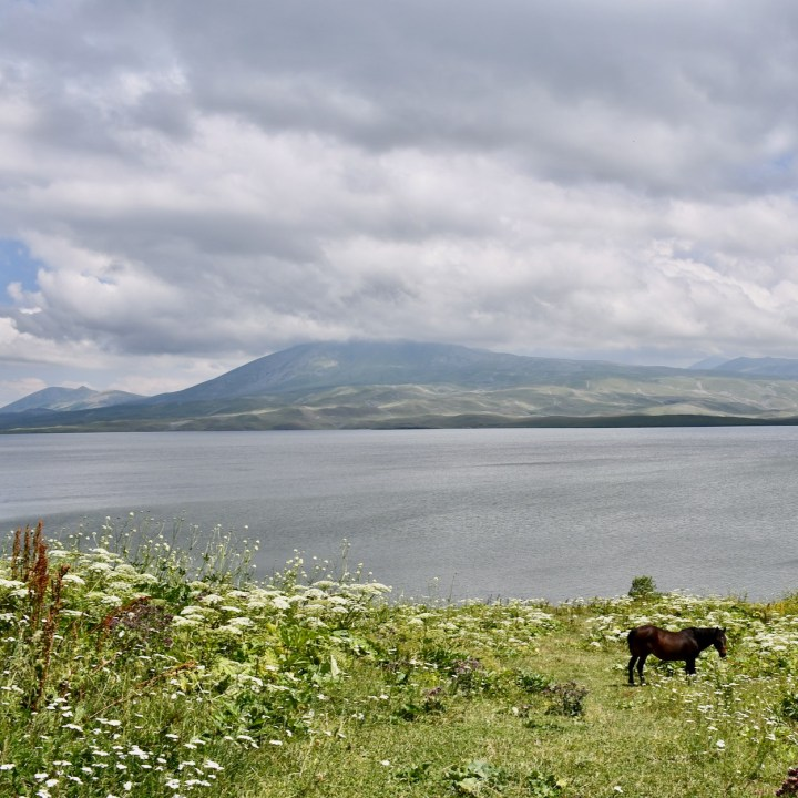 Lake Tabatskuri Georgia with kids horse