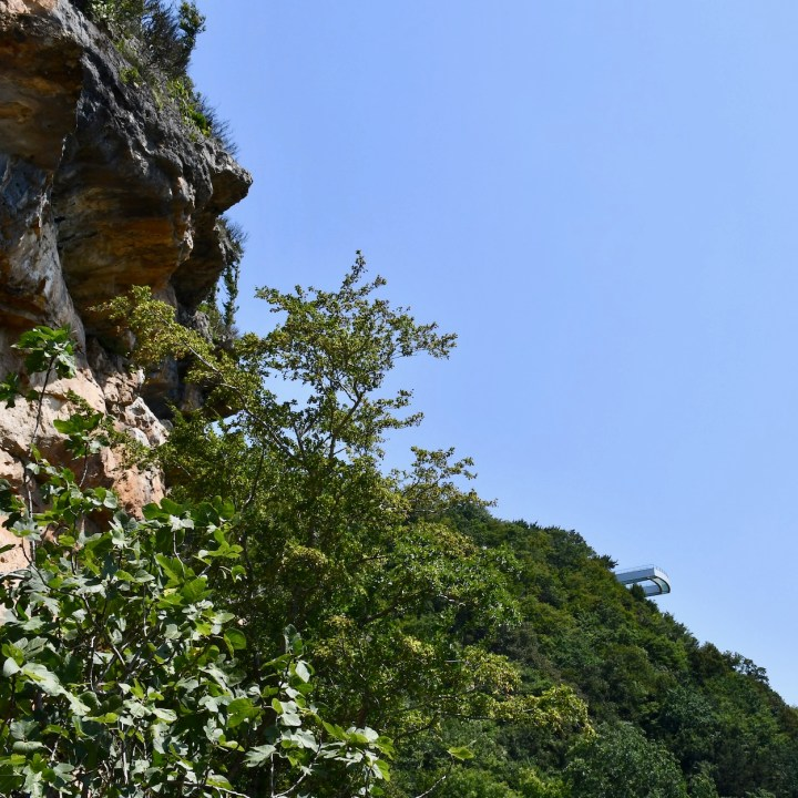 Sataplia Nature Reserve Georgia viewing platform
