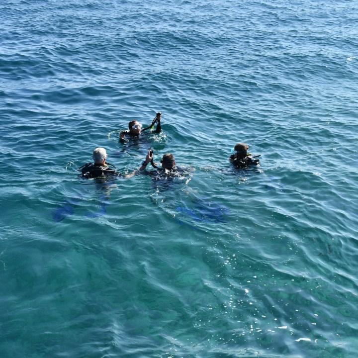 open water PADI Maldives
