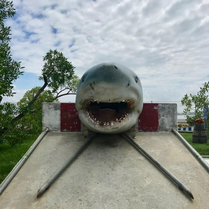 Costa Nova Portugal minigolf shark