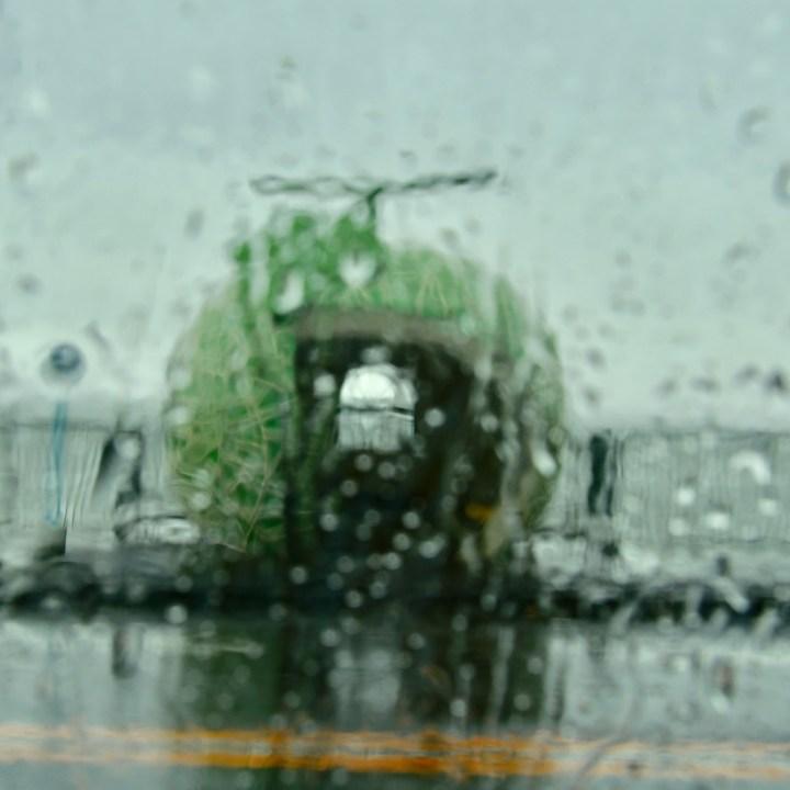 melon bus stop in the rain