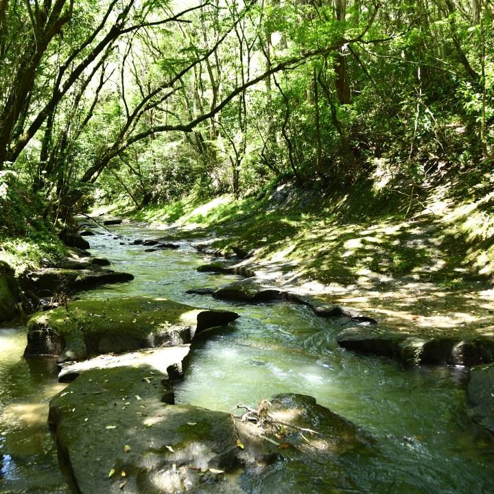 Amori river hike