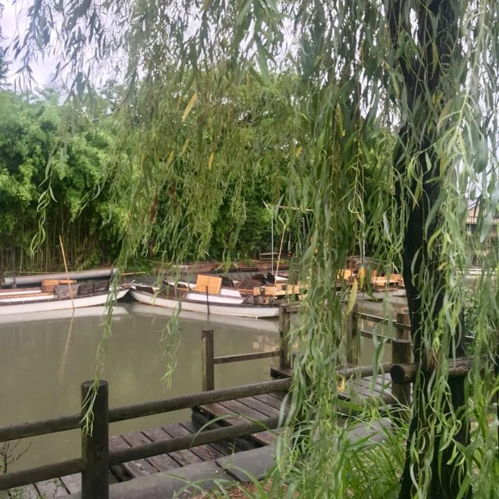 Yanagawa boat tour