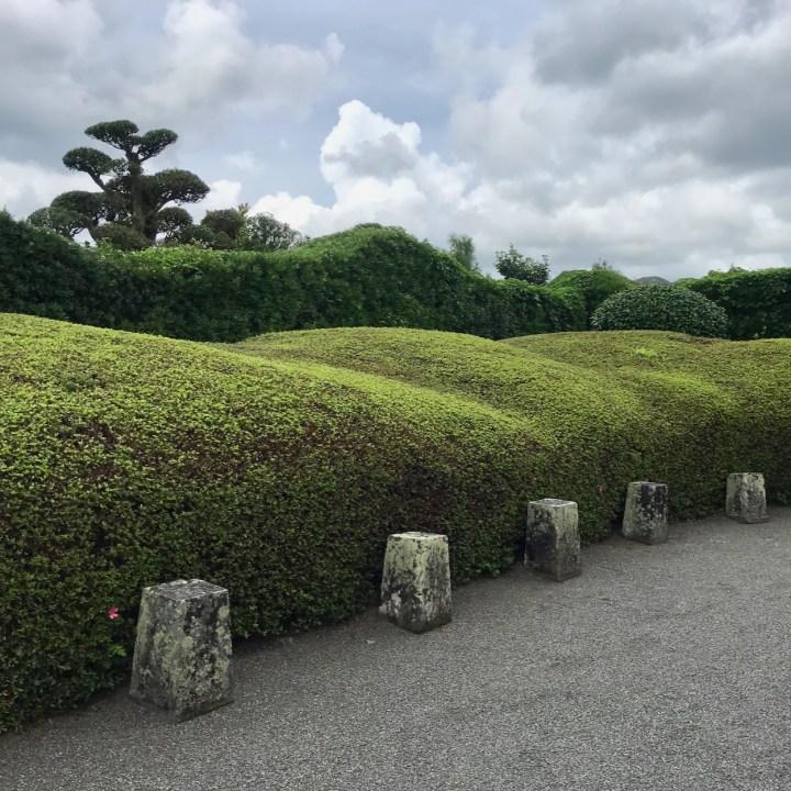 Chiran samurai residence azaleas