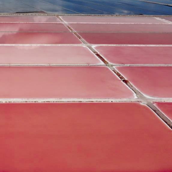 Albania, Vlore, pink salt lakes