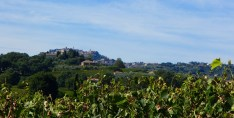 The way to Montepulciano