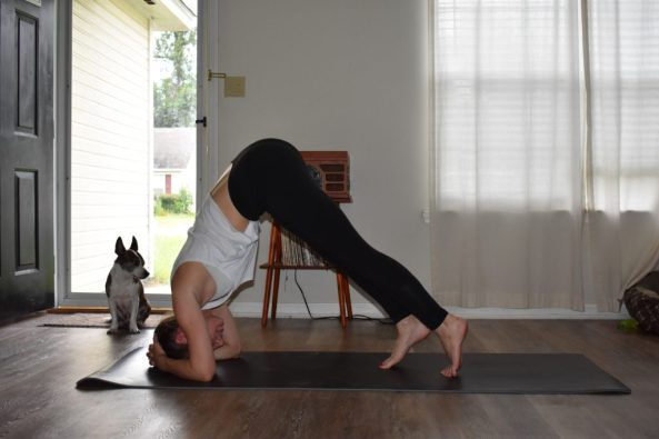 How to do a Supported headstand in yoga