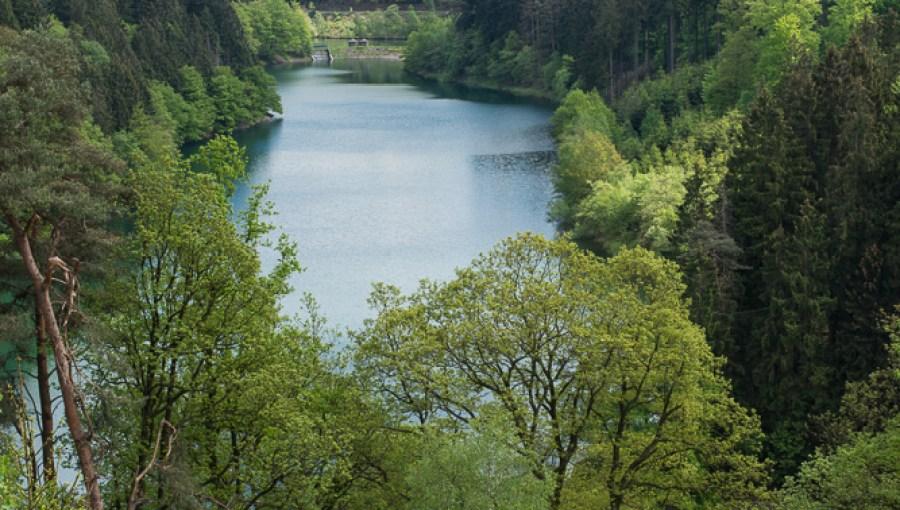 Hauptsee im Frühling