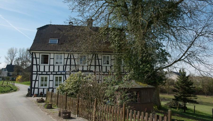 Buchholzen