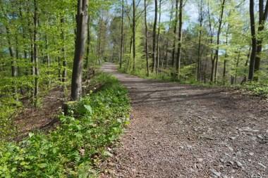 Unterwegs zur Sengbachtalsperre