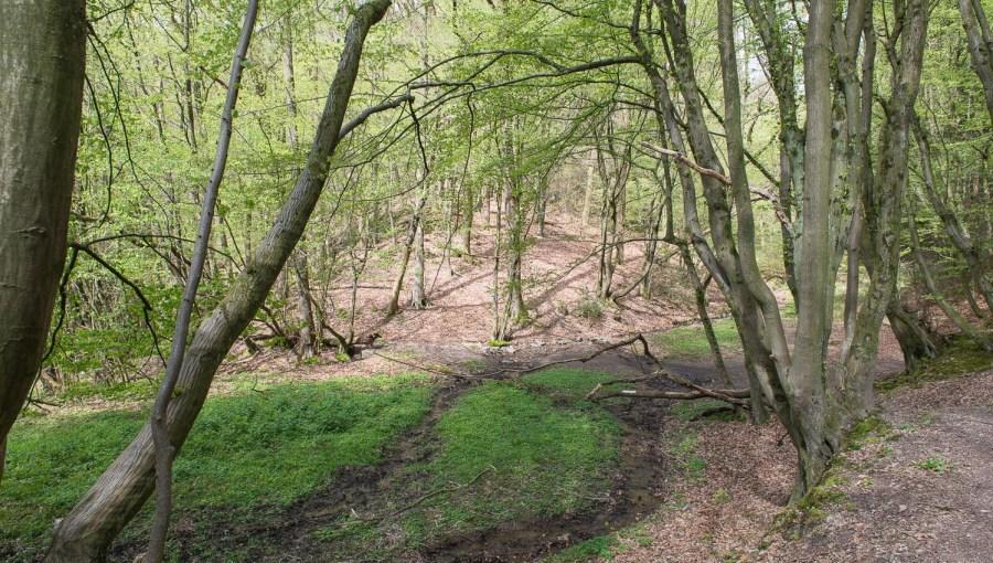 Rund um Dabringhausen-7