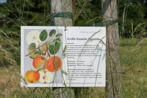 Beschilderung des Obstweges