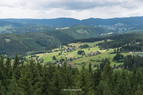 Schwarzwald vom Hochfirstturm aus
