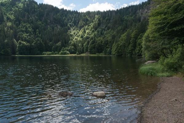 Am Feldsee