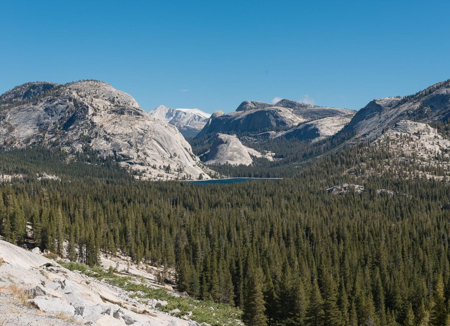 Am Tioga Pass