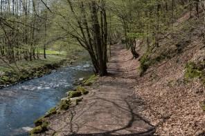 Wanderweg am Eifgenbach