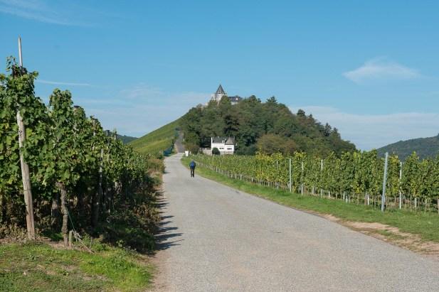 Weg zur Marienburg