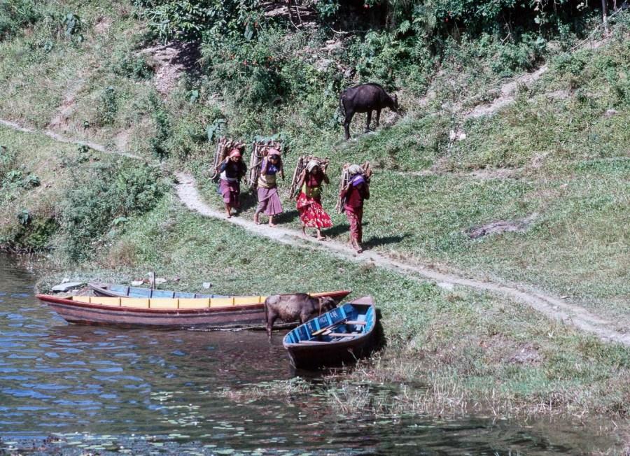 Holzträgerinnen  am Lake Pokhara