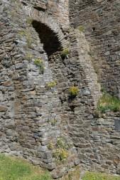 Mauer mit Blumen