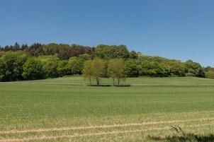 Ackerland des Klosters