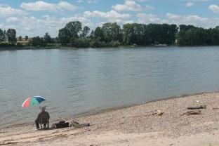 Angler am Rhein