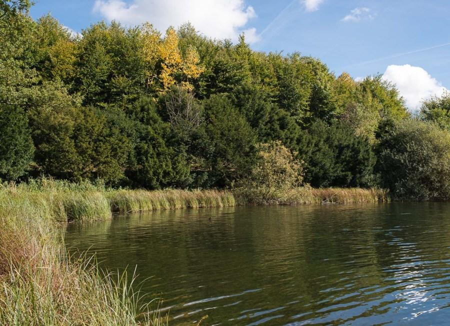Herbst 2012 an der Neyetalsperre