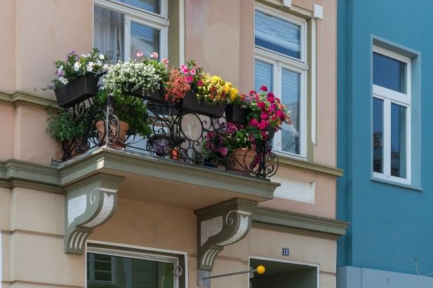Blumenbalkon in Brühl